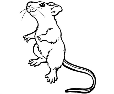 14+ Mouse Templates, Crafts & Colouring Pages