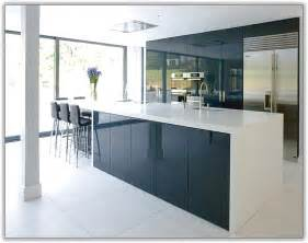 Ikea Stainless Kitchen Cabinets by White High Gloss Kitchen Cabinets Home Design Ideas