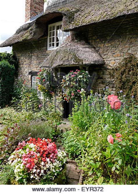 classic summer cottage garden with herbaceous