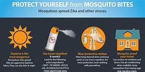 Previna picadas de mosquitos   Zika vírus   CDC