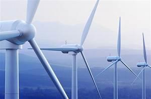 Was Können Sie Tun Um Die Umwelt Zu Schonen : sie am weltweiten energieeffizienz tag wie sie die ~ Watch28wear.com Haus und Dekorationen