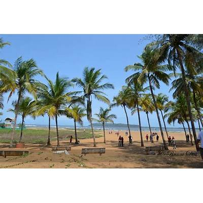 Top 5 Must Visit Beaches in Goa FebruaryBook online