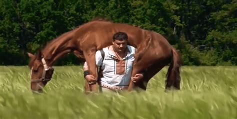 pferd statt langhantel strongman mal anders