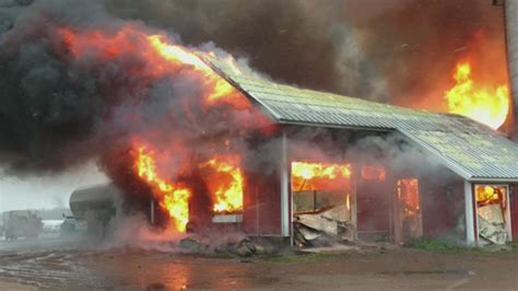 Barn Fires by 800 Dairy Cows Need New Homes After Wis Barn