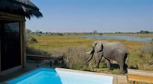 okavango delta luxury safari botswana africa uncovered With honeymoon in south africa