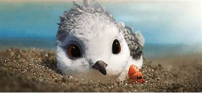 Disney Pixar Piper Animals Beach Manhattan Animation
