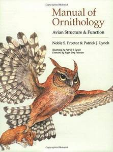 Manual Of Ornithology  Avian Structure And Function By