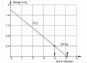 Durchschnittsgeschwindigkeit Berechnen Mathe : l sungen lineare funktionen teil vii ~ Themetempest.com Abrechnung