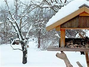 Vögel Füttern Ab Wann : v gelf tterung v gel korrekt f ttern haus ~ Frokenaadalensverden.com Haus und Dekorationen
