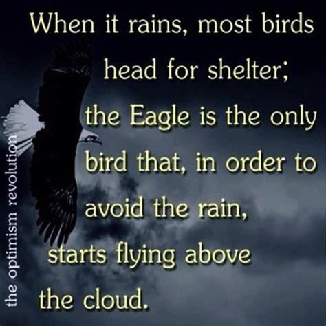 Famous Quotes About Eagle Scouts. QuotesGram
