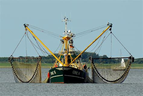 olooson group    aggregator   fishing industry