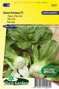 Pak Choi Samen : mini pak choi green fortune f1 kaufen samen bestellen f r nur ~ Orissabook.com Haus und Dekorationen