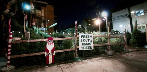 chicago christmas tree lot tree lots who are the folks who keep the season bright wbez