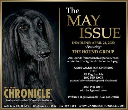April Caninechronicle Crufts K9 Mr Judge Judging