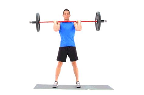 12 essential squat variations to try livestrong com