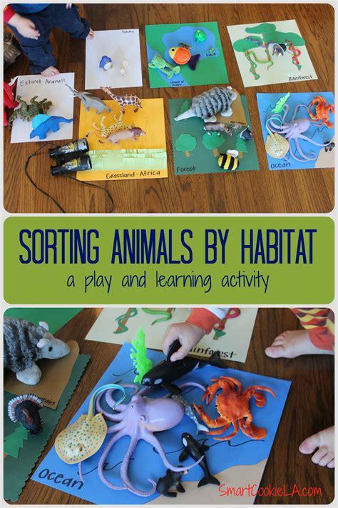 sorting and classifying animals into their habitats 310   40856a4e5de2237118fd376e2d755ccf