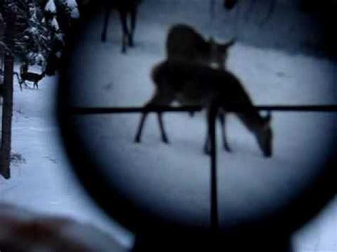 polowanie na jelenie agaclip   video clips