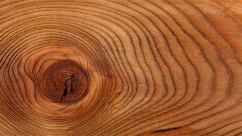 Gartenmoebel Welches Material Ist Geeignet by Welches Holz F 252 R Gartenm 246 Bel Und Terrasse