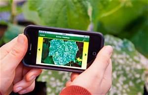 Blumen Erkennen App : pflanzen app erkennungs krankheit pflanzendoktor ~ A.2002-acura-tl-radio.info Haus und Dekorationen
