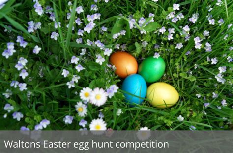 Find the hidden Easter eggs on Waltons site to win a