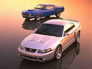 2003 Ford Mustang Cobra Terminator Wallpapers - Wallpaper Cave