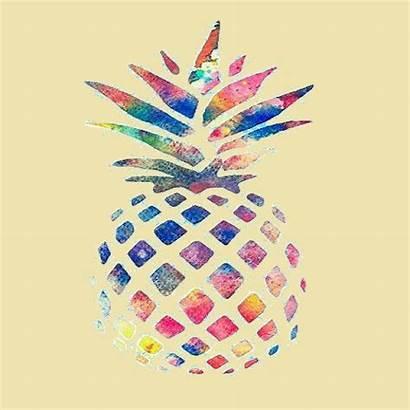 Ananas Sfondi Accedi