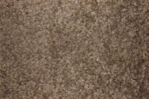 carpet texture  public domain stock photo