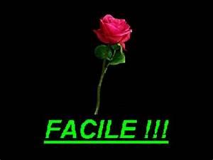 Comment Faire Secher Une Rose : une rose en papier facile mais comment faire youtube ~ Melissatoandfro.com Idées de Décoration