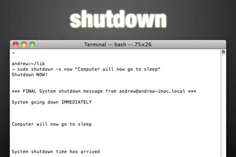 terminal commands   boost  productivity