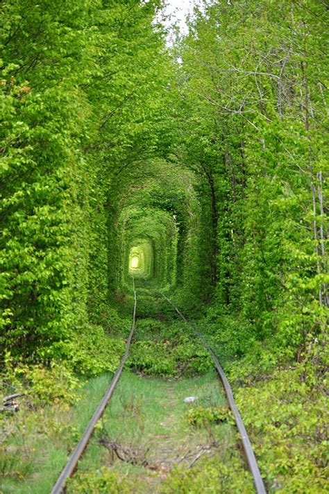 amazing tunnel  love  rivne oblast icreatived