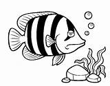 Angelfish Coloring Pages Fish Coloringcrew Template sketch template