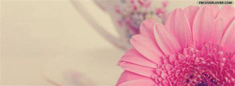Beautiful Pink Flower Facebook Cover   fbCoverLover.com