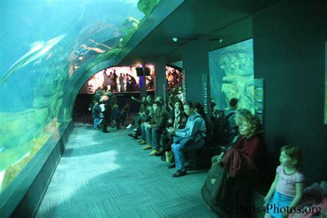 aquarium de cineaqua trocadero