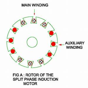Split Phase Motor   Construction  Working  Torque