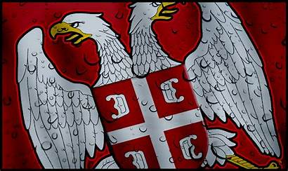 Serbia Serbian Eagle Wallpapers Background Olympus Camera