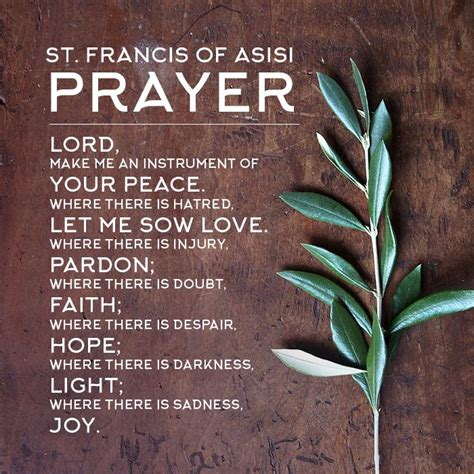 best 20 st francis ideas on no signup required st francis assisi francis of assisi
