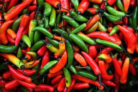 cuisine spicy spicy food will help you live longer says reports