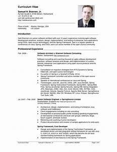 dot net developer net developer sample resume cv With cv resume