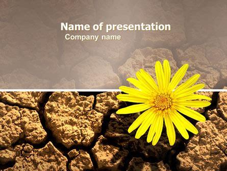 desert flower    template  google