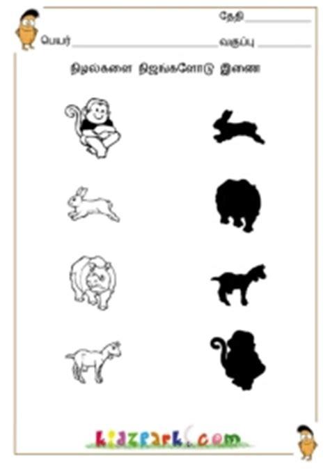tamil shadow fun worksheetsteacher printable worksheets