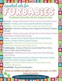 doterra essential oils for cats doterra for dogs related keywords doterra for dogs