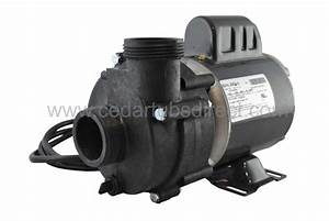 Balboa 1  8 Hp Circulation Pump
