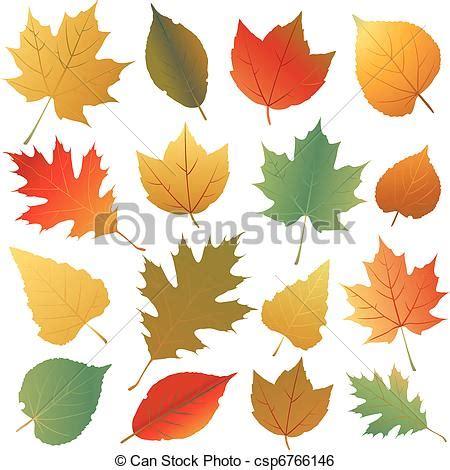 clipart autunno foglia autunno autunno parte collezione
