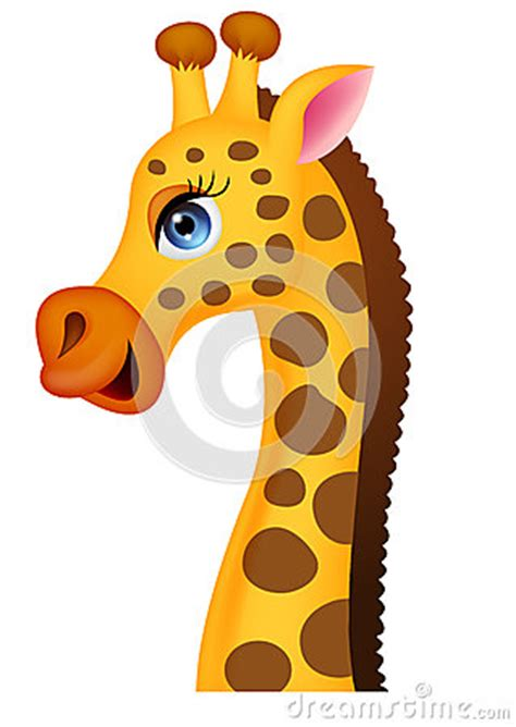 giraffe head cartoon stock images image
