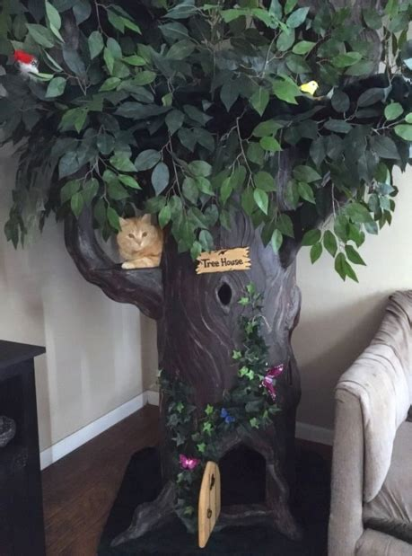 large cat trees  fantasy forest