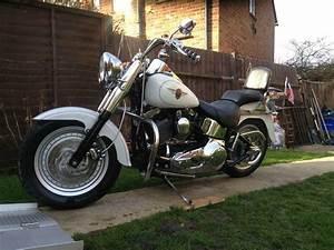 Harley Davidson Fatboy Flstfi Custom