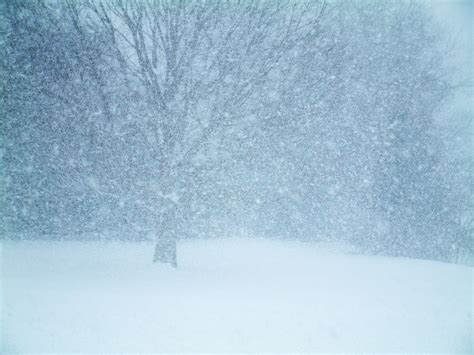 It's A Winter Wonderland!! – Signature Moms