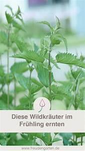 273 best garten balkon pflanzen images on pinterest With whirlpool garten mit künstliche pflanzen für balkon