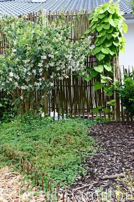 Ideen Für Sichtschutz Im Garten