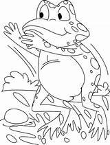 Frog Coloring Cartoon Tree Theme Printable Rahay sketch template